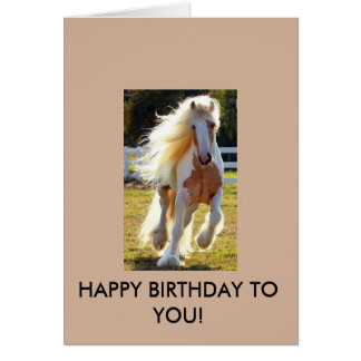Geburtstags-Karte mit einem schönen Pferd! Karte