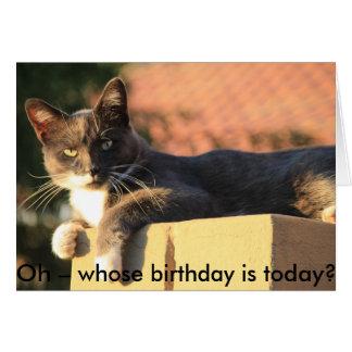 Geburtstags-Karte mit Katze: Wer Geburtstag ist Karte