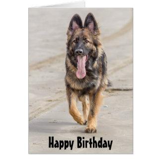 Geburtstags-Karten-Schäferhund-Hundeelsässer Karte