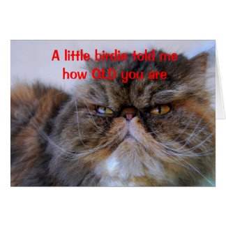 Geburtstags-Spaß-Kalikopersische Kitty-Karte Karte