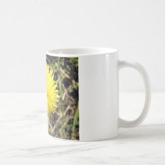 Geckiger Löwenzahn Kaffeetasse