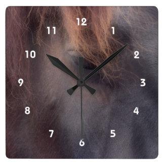 Gedanken-Auge eines Pferdetieres Quadratische Wanduhr
