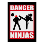 Gefahr Ninjas Posterdruck