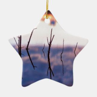 Gefallene Twiggy Reflexionen Keramik Ornament