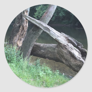 Gefallener Baum Runder Aufkleber