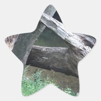 Gefallener Baum Stern-Aufkleber