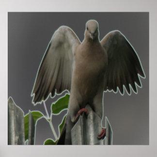 Gefallener Engels-Tauben-Druck Poster