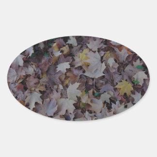 Gefallenes Ahorn-Blätter Ovaler Aufkleber
