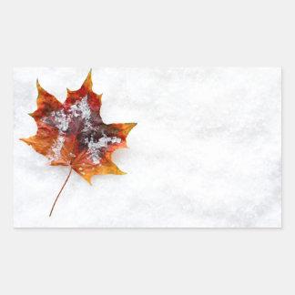 Gefallenes Blatt im Schnee-rechteckigen Aufkleber