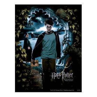 Gefangener von Azkaban - Franzosen 3 Postkarten