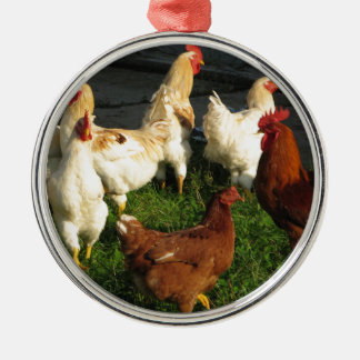 Geflügel Rundes Silberfarbenes Ornament
