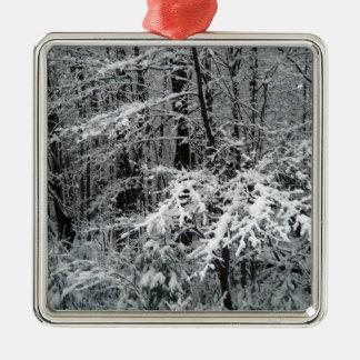 Gefrorene Baumaste, zum eines Weihnachtsbaums zu Silbernes Ornament