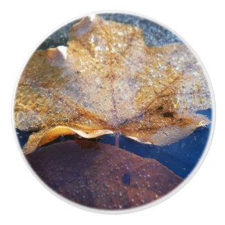 Gefrorene gelbe Ahornblatt-Herbst-Natur Keramikknauf