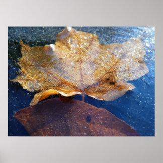 Gefrorene gelbe Ahornblatt-Herbst-Natur Poster