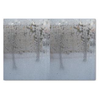 Gefrorenes Seidenpapier des Fenster-10lb, weiß