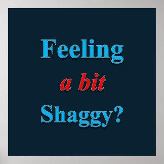 Gefühl ein Stückchen-Shaggy Plakat-Lech Poster