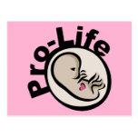 Gegen die Abtreibung Fötus-Entwurf Postkarten