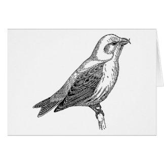 Gegenwechsel-Vogel-Kunst Karte