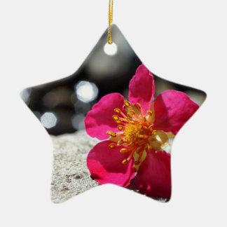 Geheimnis-rosa Blume Keramik Ornament