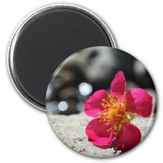 Geheimnis-rosa Blume Runder Magnet 5,7 Cm