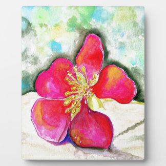 Geheimnis-rosa BlumeWatercolor Fotoplatte
