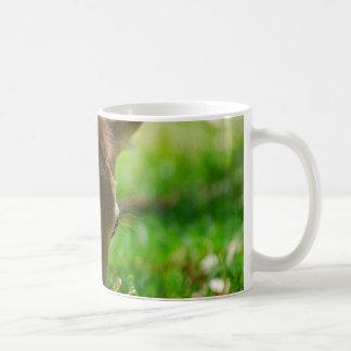 Gehen Grün für Rotwild-Antilope Kaffeetasse