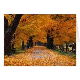 Gehen hinunter die alten Zeiten des Herbstes Grußkarte