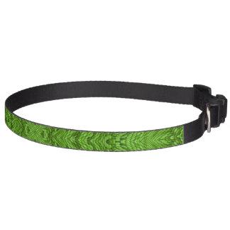 Gehende grüne bunte Hundehalsbänder Haustierhalsband