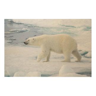 Gehender Eisbär, Norwegen Holzleinwand