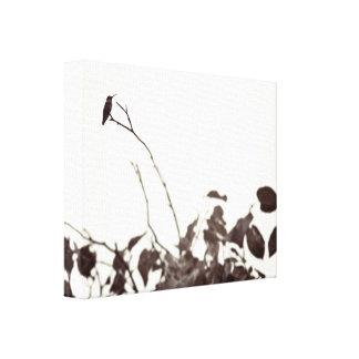 Gehockte Kolibri-14x11 eingewickelte Leinwand Galerie Faltleinwand