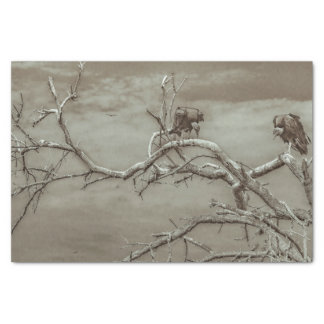 Geier an der Spitze Leaveless Baums Seidenpapier