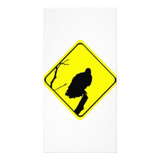 Geier-Überfahrt-Vogel-Silhouette-Überfahrt-Zeichen Fotogrußkarten