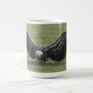 Geierraubvogel offenes Flügeltier-Foto Kaffeetasse