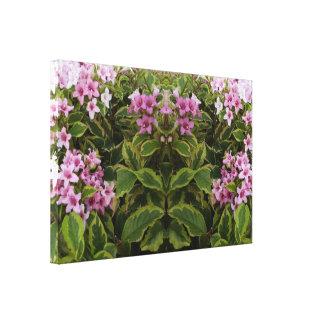Geist von Spiegel-Ordnung Rosa Bush der Pflanze Leinwanddruck