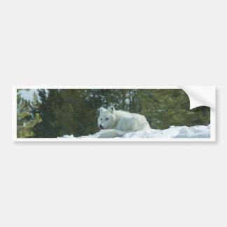 Geist-Wolf Autoaufkleber