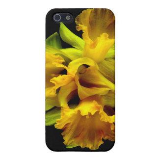 Gekräuselte Blumen-Narzissen-drastische iPhone 5 Case