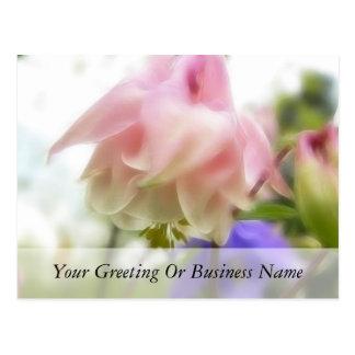 Gekräuseltes rosa Aquilegia (Columbine) Postkarte
