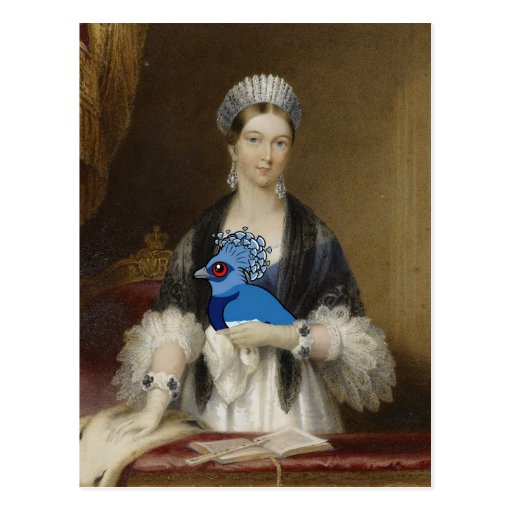 Gekrönte Taube der Königin-Victoria Postkarte