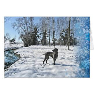 Gelassen ihm zu schneien, lassen Sie es schneien, Grußkarte