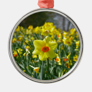 Gelb-orangee Narzissen 01,0 Rundes Silberfarbenes Ornament