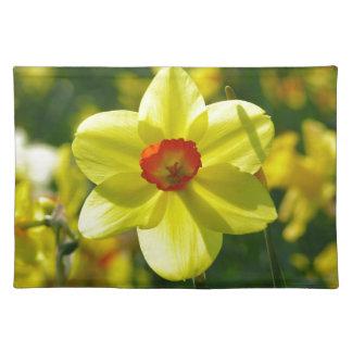 Gelb-orangee Narzissen 02.1g Tischset