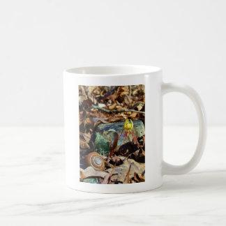 Gelb und Pflaumen-Forelle-Lilie und Tasse