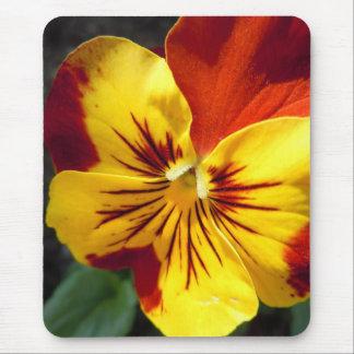 Gelb und rostiger roter Pansy Mauspad