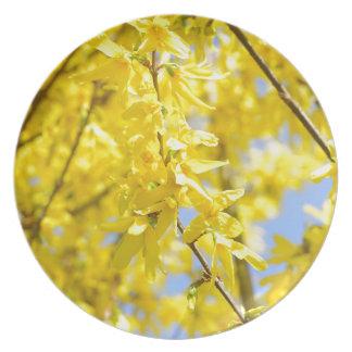 Gelb verlässt   Folhas amarelas COM gotas Grünes B Teller