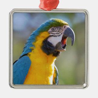 Gelbbrustara Macaw auf Stange Silbernes Ornament