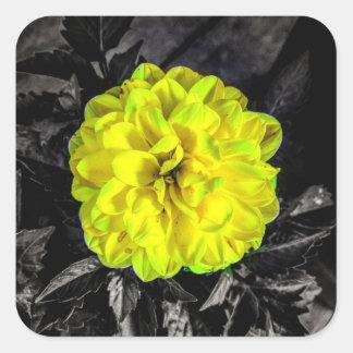 Gelbe Blume Quadratischer Aufkleber