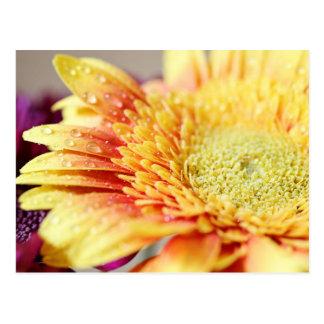 Gelbe Blume und Tröpfchen-Postkarte Postkarte