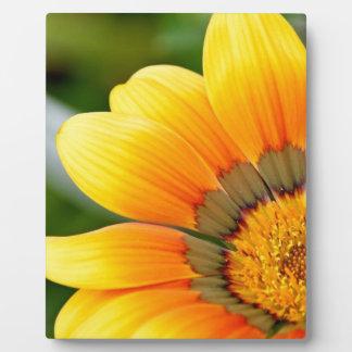 Gelbe Blüte Fotoplatte