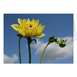 Gelbe Dahlie-Blume in der Sonne Karte