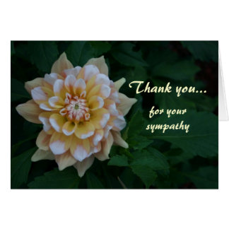 Gelbe Dahlie danken Ihnen für Ihre Beileidskarten Karte